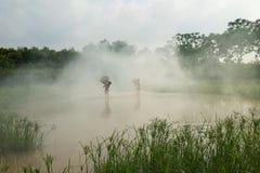 Bac Ninh, Vietnam - 29 maggio 2016: Bambini che pescano pesce pescando trappola di bambù - il vecchio modo tradizionale, sullo st fotografia stock