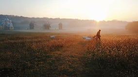 Baca prowadzi stada kózki paśnik Wczesny poranek, złoty światło słoneczne W tle jest i mleje pole zbiory