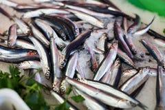 Bacalaos en el mercado Imagen de archivo