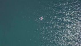 BACALAR,墨西哥, 2017年10月05日:在从寄生虫-射击的大海的筏航行 股票视频