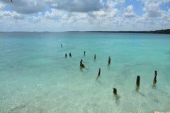 Bacalar lagun i Quintana Roo Mexico royaltyfria bilder