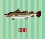 Bacalhau atlântico ilustração do vetor