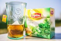 Bacardi feat Lipton. Logo of Bacardi rum and tea Lipton Stock Images
