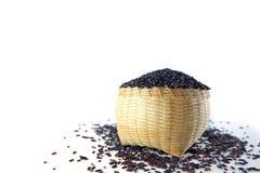 Bacca del riso cruda Immagine Stock