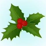 Bacca dell'agrifoglio di Natale nello stile semplice del fumetto Illustrazione di vettore Accumulazione di nuovo anno Fotografia Stock