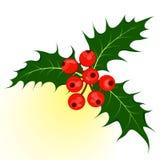 Bacca dell'agrifoglio Illustrazione di vettore di simbolo di Natale royalty illustrazione gratis