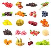 Bacca e frutta Immagine Stock Libera da Diritti