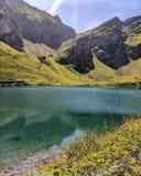 Bacca Lioson, Svizzera Fotografia Stock