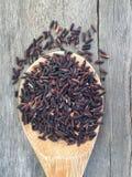 Bacca organica del riso Fotografia Stock