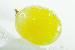 Bacca verde succosa dell'uva Fotografia Stock Libera da Diritti
