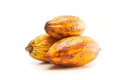 Baccelli del cacao su bianco Fotografia Stock