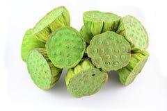 Baccelli del seme di Lotus dentro  Immagine Stock