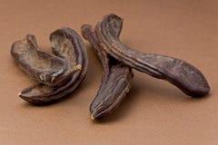Baccelli della carruba (siliqua di Certonia) Immagini Stock