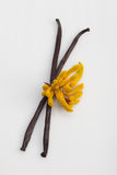 Baccelli di vaniglia Fotografie Stock