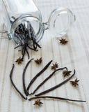 Baccelli di vaniglia immagini stock