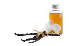 Baccelli, fiore e bottiglia della vaniglia Fotografia Stock Libera da Diritti