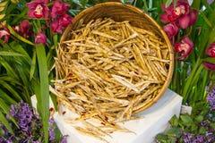Baccelli secchi dei fagioli Fotografia Stock