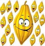 Baccello del cacao con molte espressioni facciali isolato Immagini Stock