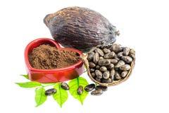 Baccello del cacao, fave di cacao, cacao in polvere su un fondo bianco Fotografia Stock