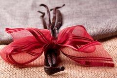Baccello di vaniglia gastronomico Fotografia Stock
