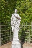 Bacchante Versailles, Frankrike Arkivfoton