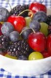 Bacche & ciliege Fotografia Stock Libera da Diritti