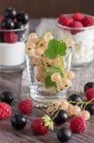 Bacche assortite, uva passa, lamponi, fragole Ribes bianco nel vetro Nel yorgut del fondo con le bacche Immagine Stock Libera da Diritti