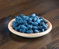 Bacche blu Fotografie Stock Libere da Diritti