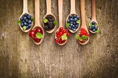 Bacche in cucchiai di legno Fotografia Stock