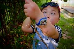 Bacche del gelso del raccolto della riunione del ragazzino fotografia stock libera da diritti
