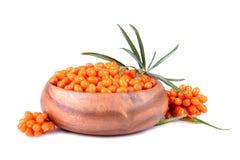 Bacche dell'olivello spinoso Immagine Stock Libera da Diritti