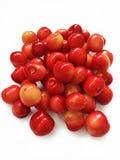 Bacche della ciliegia Immagine Stock