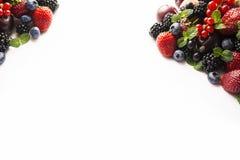 Bacche della miscela su un bianco Bacche e frutti con lo spazio della copia per testo alimento Nero-blu e rosso More mature, mirt Fotografia Stock