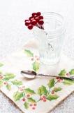Bacche in di cristallo Fotografia Stock Libera da Diritti