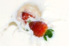 Bacche e crema Immagini Stock