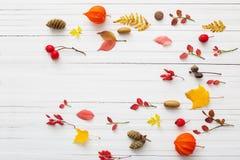Bacche e foglie di autunno rosse su fondo di legno bianco Fotografia Stock
