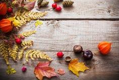 bacche e foglie di autunno rosse su vecchio fondo di legno Immagini Stock