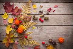 bacche e foglie di autunno rosse su vecchio fondo di legno Fotografia Stock Libera da Diritti