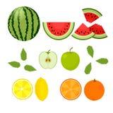 Bacche e frutti Anguria, arancia, limone, mela su un fondo bianco Vettore illustrazione di stock