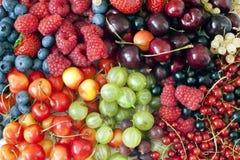 Bacche e priorità bassa della frutta Fotografia Stock