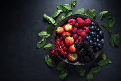 Bacche fresche in ciotola, concetto antiossidante fotografia stock