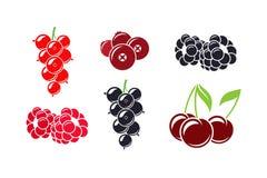 Bacche fresche Mirtillo rosso e mora isolati della ciliegia del ribes del lampone su fondo bianco Fotografie Stock