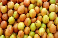 Bacche gialle fresche della giuggiola Fotografie Stock