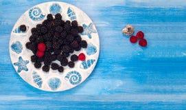 Bacche, lamponi, mora, mirtilli, mora, mora, piatto, fondo blu, piccolo fruttato, grano, seme, nocciolo, granu Fotografia Stock Libera da Diritti