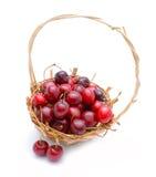 Bacche mature della ciliegia in cestino Immagine Stock
