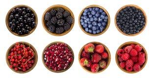 bacche Nero-blu e rosse Collage dei frutti differenti e bacche isolate su bianco Immagine Stock