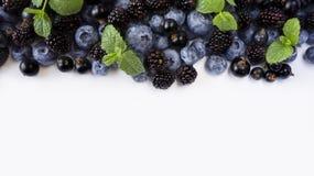 bacche Nero-blu su un bianco Mirtilli, ribes neri e more maturi Immagini Stock