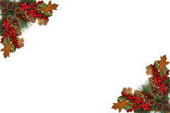 Bacche rosse delle pigne dell'etichetta del fondo di Natale ed imbarcato dalla ghirlanda festiva Immagini Stock Libere da Diritti