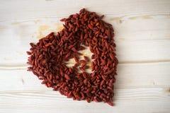 Bacche rosse di Goji Fotografie Stock