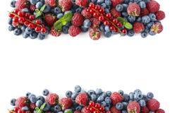 Bacche rosse e blu Varie bacche fresche di estate sulla parte posteriore di bianco Fotografia Stock Libera da Diritti
